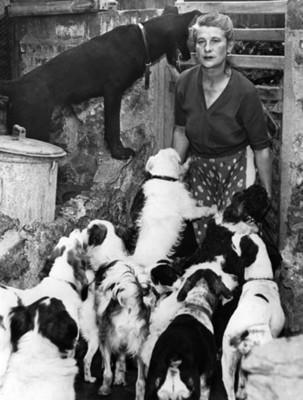 Mujer con perros