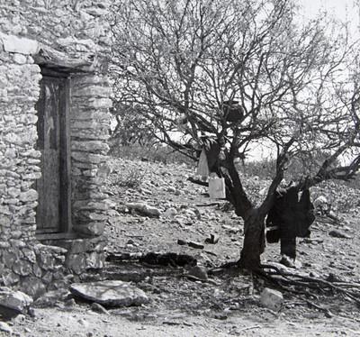La casa de piedra. Metamorfosis