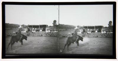 Hombre monta toro en un jaripeo
