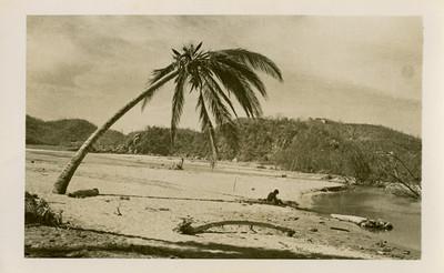 """""""Playa y arroyo de Salagua"""", después del ciclón"""