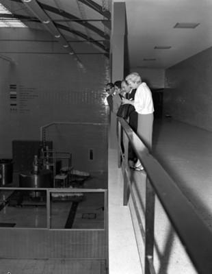 Mujeres y hombres en la planta alta de una fábrica observan maquinaria