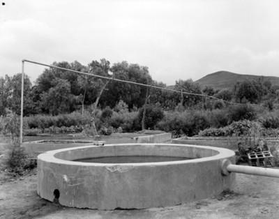 Piletas con agua para riego en campo de cultivo
