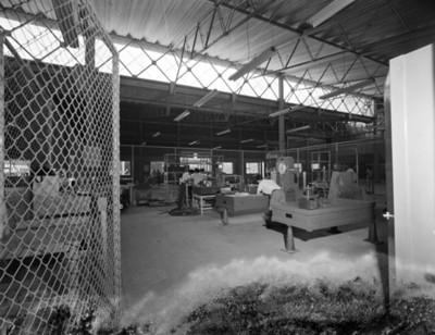 Trabajadores durante horas laborales en una planta automotríz