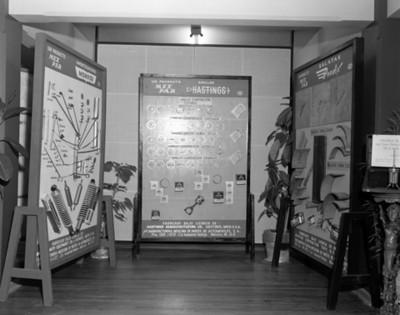 Productos fabricados por MEX PAR, exposición