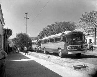 Autobuses estacionados sobre la calle