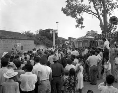 Gente alrededor de autobús junto a un árbol