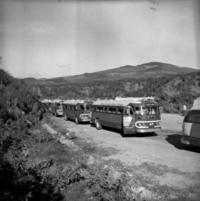 Autobuses estacionados en una carretera