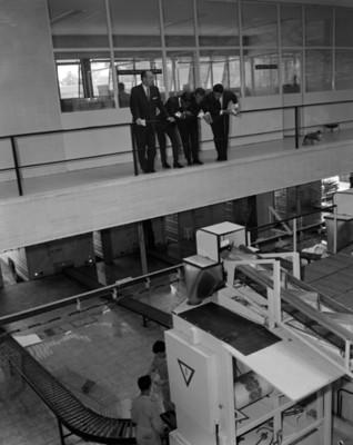 Hombres observan proceso en una fábrica