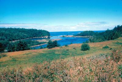 Desembocadura de un rio, paisaje