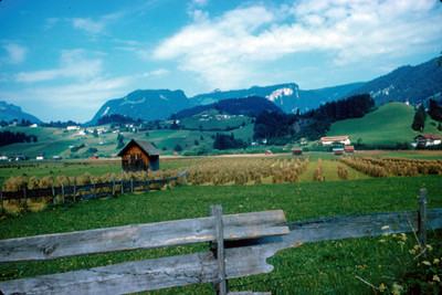 Panoramica de campos de cultivo en Oberstdorf