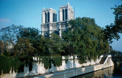 Catedral de Notre-Dame, rodeada por el rio Sena, vista parcial