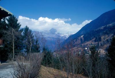 Villa alpina entre bosque y montañas, paisaje