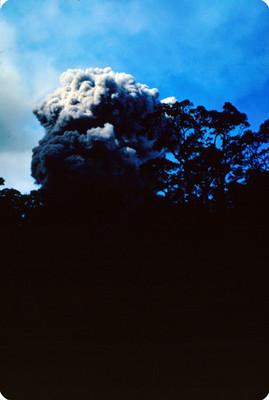Vista de fumarola del volcan Poas, desde zona boscosa