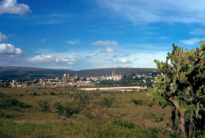 NH San Miguel AllendeNH, paisaje