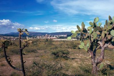 NH San Miguel de AllendeNH, paisaje