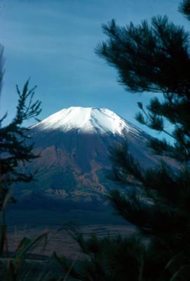 Volcan Pico de Orizaba, vista desde zona boscosa en sus faldas