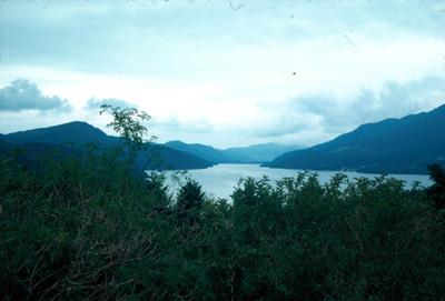 Rio, vegetacion y montañas, paisaje