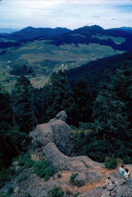Vista de llanura y bosque
