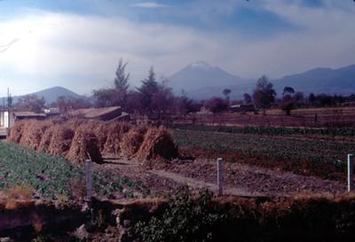 Campos de cultivo y el volcan Popocatepetl, paisaje