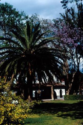 Hotel Peñafiel, jardines