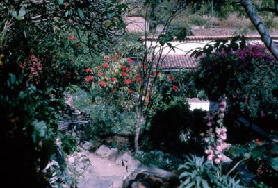 Vista desde balcon, pasillos y jardin de casa habitacion