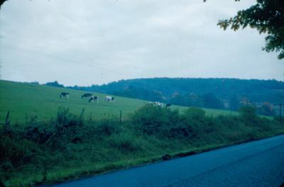 Vista de carretera en
