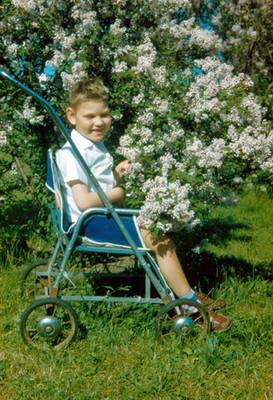 Niño sentado dentro de carreola en jardin