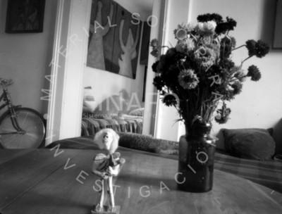 Calavera con flores y bicicleta