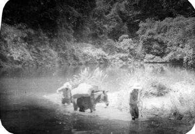 Paso del río lacanjá, frey al frente ( 14 )