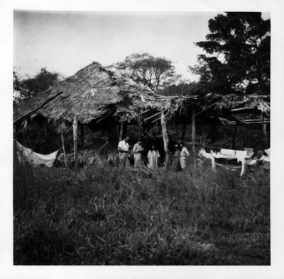 Grupo de expedicionarios en El Cedro