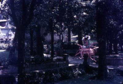 Calavera en exhibición en un jardín de Cuernavaca