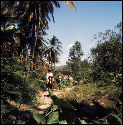 Grupo de actores cabalgan por un lugar selvático. Escena