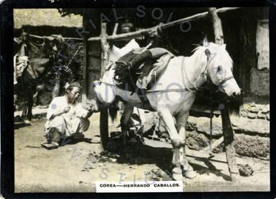"""Hombres """"herrando caballos"""""""