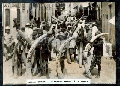 Hombres caminan por una calle y cargan colmillos de marfil