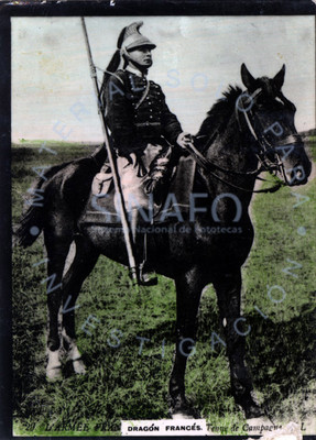 """""""Dragón francés"""" montado a caballo, retrato"""