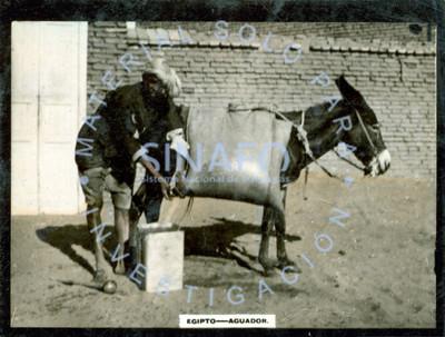 """""""Aguador"""" junto a burro de carga en una calle, retrato"""