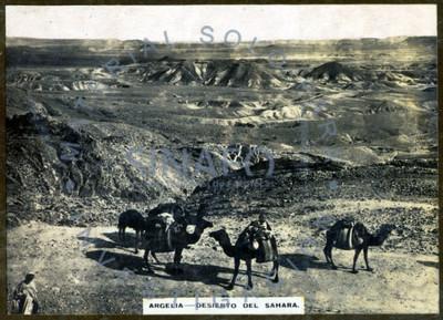 """""""Argelia. Desierto del Sahara"""", paisaje"""