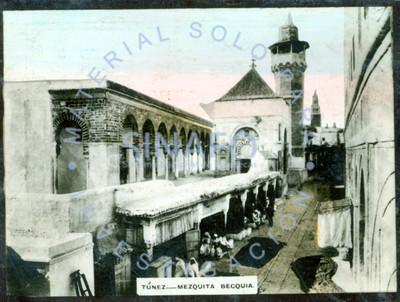 Tunez - Mezquita becquia