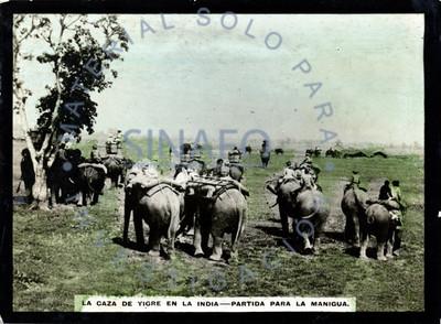 """Gente monta elefantes en la """"partida para la manigua"""" durante la """"caza de tigre en la India"""""""