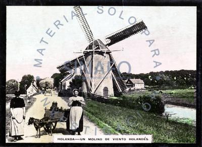Holanda. Un molino de viento holandés