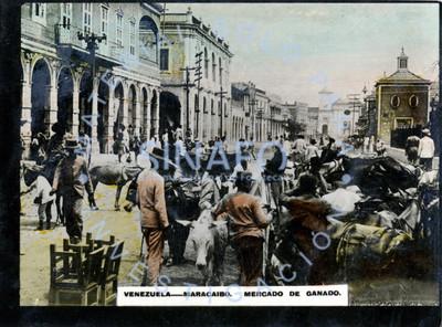"""Gete camina por una calle de """"Maracaibo"""" junto al """"mercado de ganado"""""""