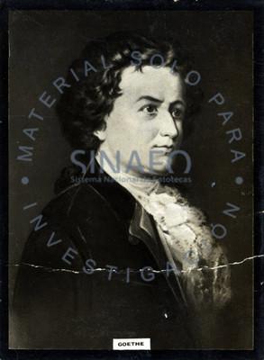 """Johann Wolfgang von """"Goethe"""", retrato de tres cuartos"""