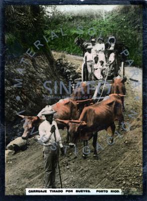 """Grupo familiar sobre un """"carruaje tirado por bueyes"""""""