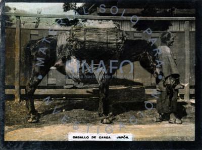 """Hombre de perfil frente a su """"caballo de carga"""""""