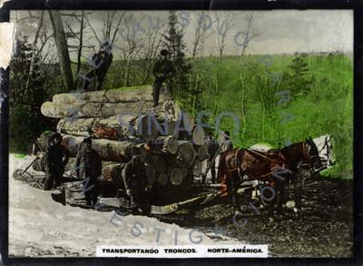 Leñadores sobre troncos de madera tirados por caballos