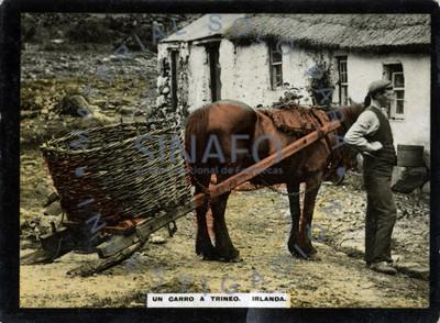 """Campesino posa junto a su caballo que tira de """"trineo"""""""