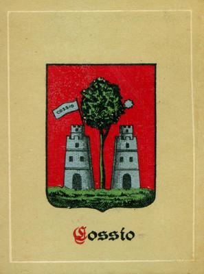 """Escudo nobiliario del apellido """"CSSIO"""""""