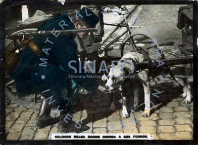 Soldado belga dando comida a sus perros