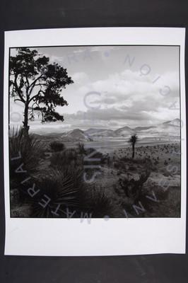 Vista del Valle de Perote