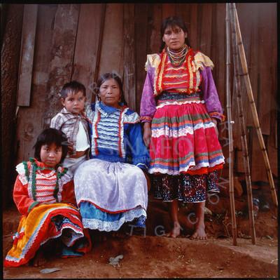 Familia Robles Sandoya, Huastecos